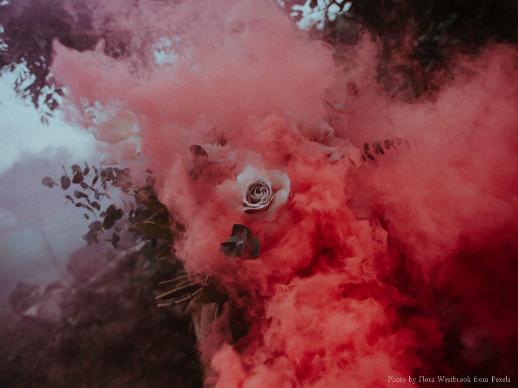 Red Smoke and Rose